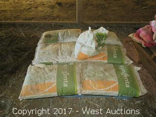 (6) Bags of Syngenta Triticale Seed