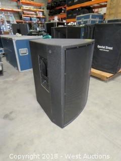 Radian RPX-115p Full-Range Speaker