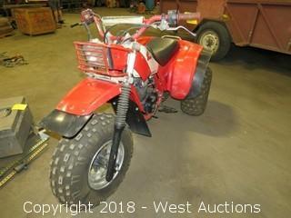 Honda 200X 3 Wheeler