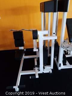 Paramount AP-2200 Triceps Extension Machine