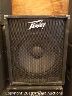Peavey PV118 Speaker