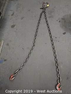 Columbus McKinnon 2-branch Chain Sling
