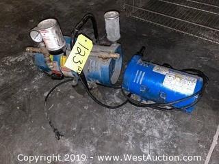 (2) Air Pumps