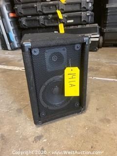 """10""""x13"""" Speaker"""