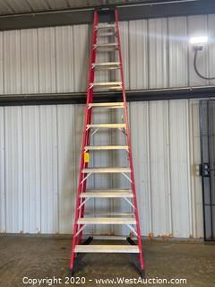 Werner 12' Ladder