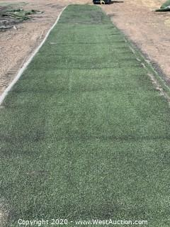 Strip of Commercial Grade Artificial Grass/Lawn Turf - 35' x 7'
