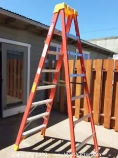 8' Werner Fiberglass Ladder