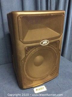 Peavey PVX-P15 Speaker