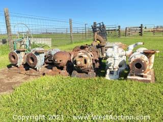 Bulk Lot: Pumps and Motors