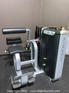 Matrix Back Extension Machine