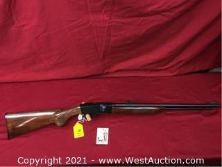 Remington Mod. 552 22lr Semi Auto