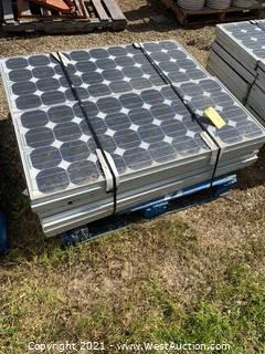 (16) Siemens Boy Solar Panels
