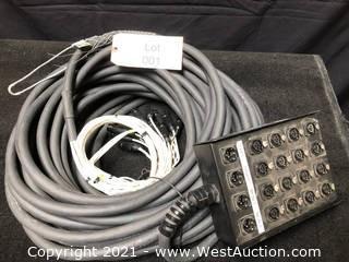 (1) Audio Snake 100ft 16x4