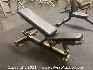 Hammer Strength Flat/Incline Bench