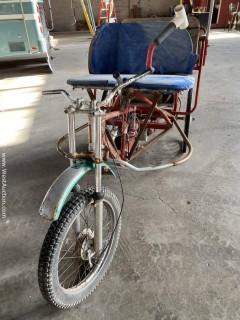 4- Person Electric Rickshaw, 20 mph